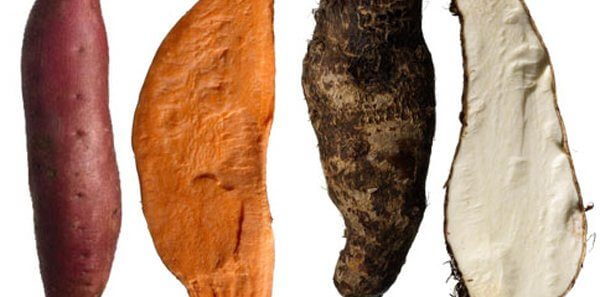 What Is The Difference Between A Sweet Potato And A Yam?