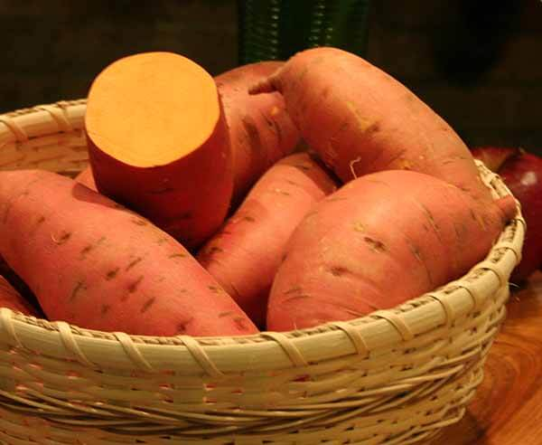 Types of sweet potatoes north carolina sweet potatoes - Potatoes choose depending food want prepare ...